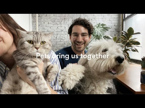 Pets Can Bring Us Together